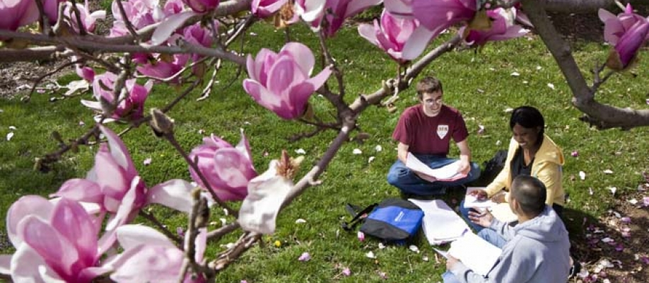 A springtime campus scene at EKU